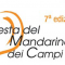 VII edizione Festa del Mandarino dei Campi Flegrei